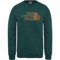 The North Face Drew Peak Trui Donkergroen/Groen