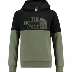 The North Face Drew Peak Raglan Hoodie Junior Donkergroen