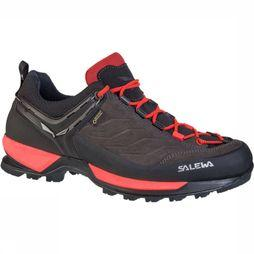 Salewa Moutain Trainer GTX