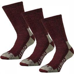 Alpaca socks 3-Pack Sok Bordeaux